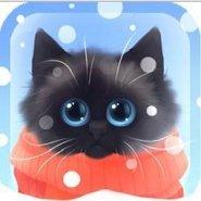 Christmas Kitten